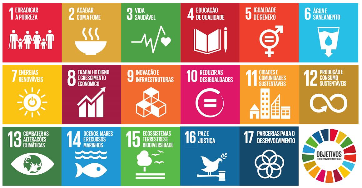 """Résultat de recherche d'images pour """"ods objetivos do desenvolvimento sustentável"""""""